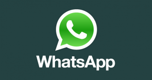 whatsapp teaser logo color vertical